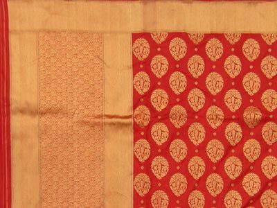 Banaras Brocade Saree